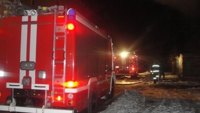 Больше 30 животных погибли впожаре вбийском приюте