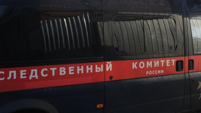 Жительница Барнаула задушила сестренку , оскорбившую ееребенка