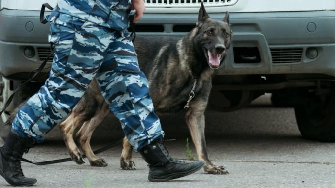 Полицейские пресекли деятельность наркопритона вРубцовске