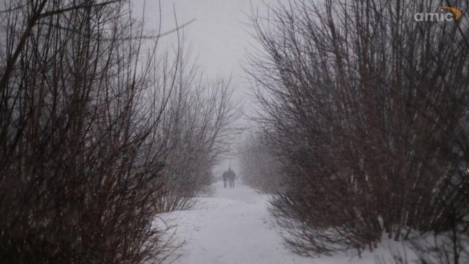 Погода 14декабря вАлтайском крае: тепло, снег иметели