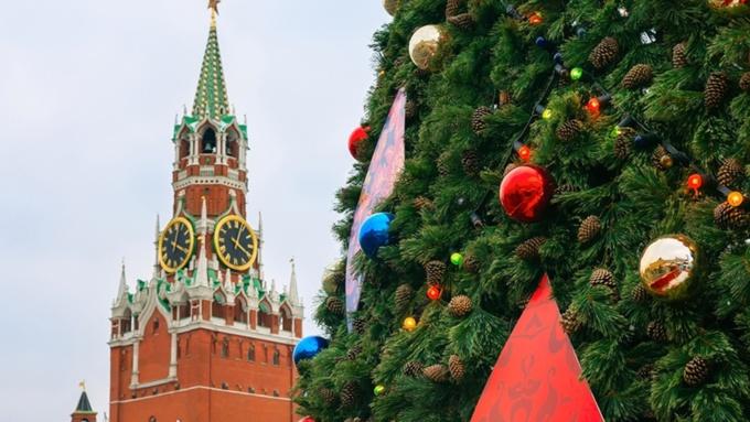 Основные политики РФ поведали о собственных планах наНовый год