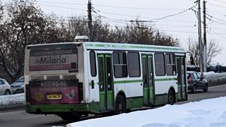 Депутат Госдумы Алтайского края предложила обновить общественный транспорт счет государства