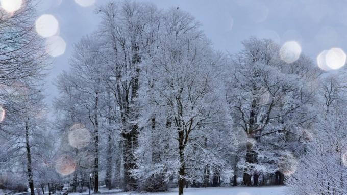 Снег вновь ляжет в Алтайском крае