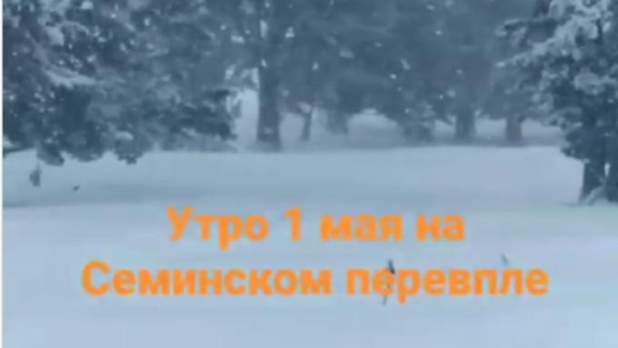 Семинский перевал на Алтае замело снегом 1 мая. Видео