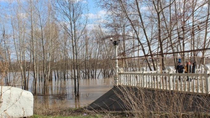Уровень воды в реке Бия в районе Бийска превысил критический уровень