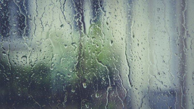 Дождливая погода сохранится в Алтайском крае до конца недели