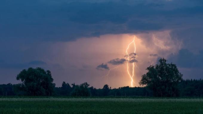Кратковременные дожди и грозы ожидаются в Алтайском крае 26 июня