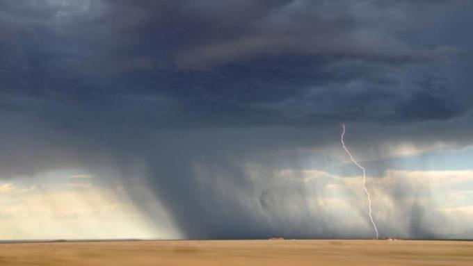 До +29 и дожди с грозами: прогноз погоды в Алтайском крае на 29 июня