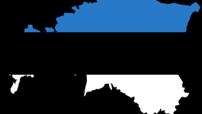 ФСБ задержали консула Эстонии в Санкт-Петербуге