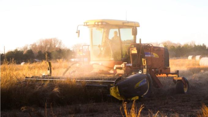 Мошенники похитили у алтайского фермера 630 тысяч рублей
