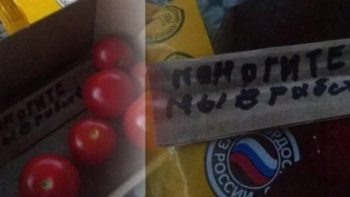 Жительница Новосибирска нашла странное послание в помидорах