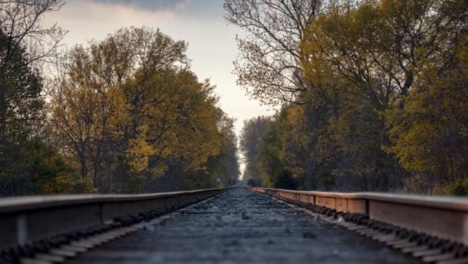 Названа причина столкновения поездов в Амурской области