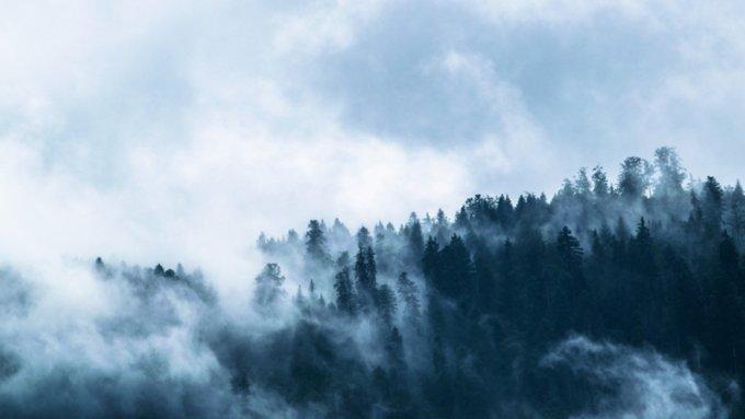 Утренний туман и небольшой дождь. О погоде в Алтайском крае 10 сентября