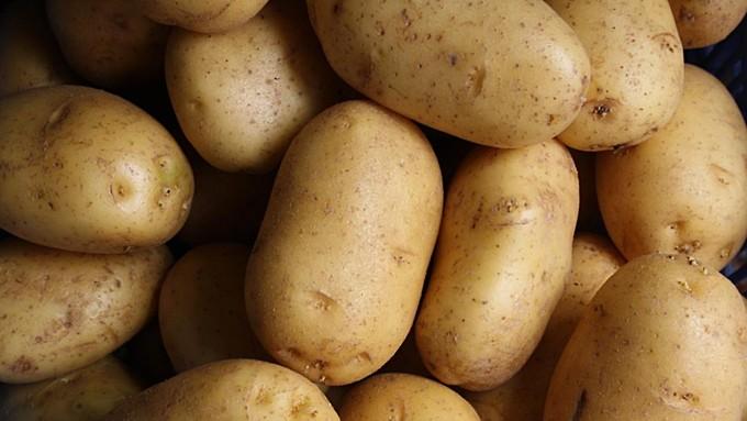 Диетолог объяснила, почему не стоит отказываться от картофеля
