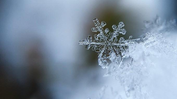 Снег и до +8. О погоде в Алтайском крае 13 октября